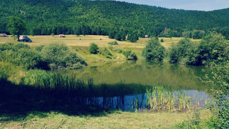 lac mariet -Arith-Massif des Bauges (16)