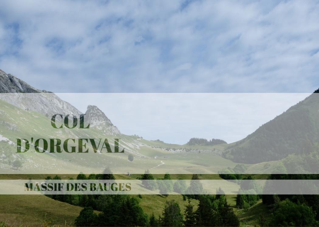 Miss Thelma Col d'Orgeval Massif des bauges Savoie